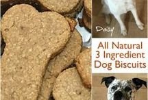 Pet Recipes & DIYs / Recipes for your dogs or cats, helpful tips and some DIY projects.