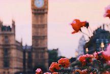 Flowers  / Keep calm and love flowers!