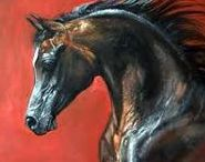 ISLAMLOVE-HORSES da Vinci / Arabian horses can fly without wings.