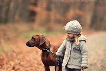 Cute Pet Pics