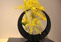 Flor - Decor / Флор - декор