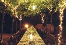 Party Ideas / by Kathryn Taylor
