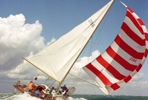 Boating Sun