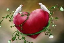 Hearts / by Harriet Swindell