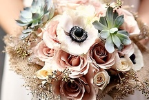 Wedding plans / Things pertinent to my ladies <3 / by Virginia Sides
