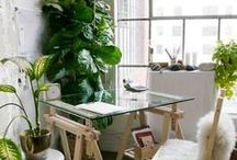 Inspiration - Workspaces / Where all begins