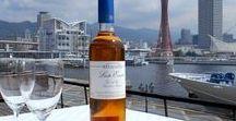 イタリアワイン会の舞台となった神戸 / Marwell Wineが吟味したこだわりのワインで素敵な時間を過ごしましょう‼