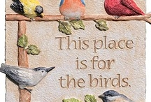 This is for the birds / by Anna Bishop