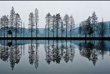 Sound of Silence - Reflection