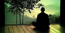 "Serenity / ""Boredom is the feeling that everything is a waste of time; serenity, that nothing is."" - Thomas Szasz."