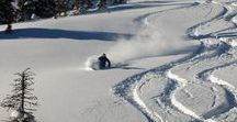 Heli-Skiing Adventures / Experience the ultimate powder day