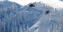 Snowcat Skiing Adventures / Experience backcountry powder