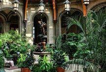Winter Gardens & Courtyards