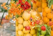Blooms ( / Plants, flowers, gardening tips / by Megan Shine