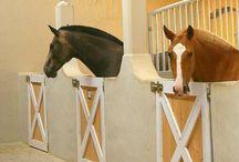 Horse Building Ideas.«