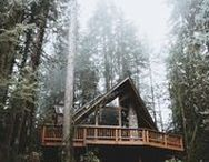 CABANES / FORETS