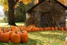 For The Love Of Fall / by Brittany Nofziger