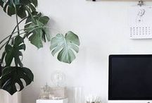 HOME - OFFICE / If you are going to work at home, it might as well be somewhere beautiful. Organised, efficient use of space, hidden technology and creature comforts.