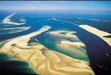Nature Bassin / Participez à la découverte des sites naturels préservés du Bassin d'Arcachon