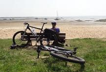 Vélo Bassin / Pourvu de plusieurs centaines de kilomètres de pistes cyclables et autres chemins à emprunter à vélo, le Bassin d'Arcachon est un lieu idéal pour faire du vélo !!!