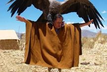 Eagle & Indian / American Indian