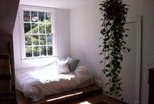 Plants in bedroom