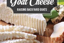 P ~ Goats & Cheese