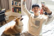 Jung Hae In / because i love you, boy