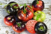 """Heirloom Seed Wish List  :) / I have such lofty plans for my growing garden patch!! I dream of planting as many heirloom varieties as I possibly can. (giving the proverbial """"finger"""" to Monsanto!) :) / by Teresa Fleming"""