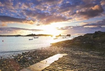 Guernsey Videos