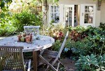 Bahçe / Garden