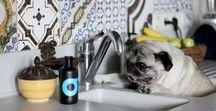 SHOO BATHING TIPS