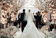 Wedding / by Julie T