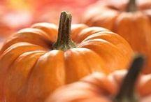 *Autumn/Thanksgiving* / autumn crafts, decor, and food