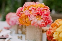 Tangerine *THE color of 2012* / by viva bella events