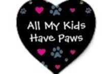 Cats & cat stuff / I've been a cat lover from way back, always have a few!