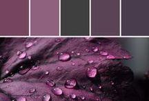 Plum   CL 1307N / Attitude CL1307N Dark Purple, Evokes Excellence Moon1