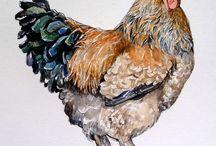 Eggs & Bacon / by Rinda Mueller