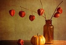 Herbst-Deko / by Christel Romahn