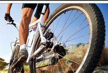 MOUNTAIN BIKING / Mountain biking ideas including mountain bikes.