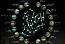 골프 인포그래픽 / Golo Infographics