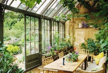 Country living / a wood or brick house full of books and flowers and friends surrounded by the wilderness