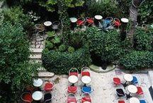 Paris / Paris, ses parisiennes et ses parisiens, la tour eiffel, le sacré coeur, les toits en ardoise où glisse la pluie, les macarons, la seine, l'île saint louis, la vie de quartier, les terrasses de café...