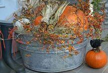 Thanksgiving/Fall Ideas / Thanksgiving/Fall