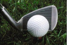 ● GoLF ● GoLF ● / gOLf cOuRseS :★: pLaYerS  Here are some extraordinary images of links/ holes, the masters, highlights and lowlights, and other accessories  from some of the best golf courses around!  A golf course comprises a series of holes, each consisting of a tee box, a fairway, the rough and hazards, and a green with a flagstick pin and hole cup. A standard round of golf consists of playing eighteen holes.  / by ♥ Rhonda Arrington ♥