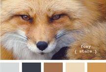 Colours - Palettes - Brown