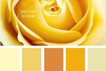 Colours - Palettes - Yellow
