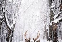 Hashtag Winter Love / Viele assoziieren den Winter mit Kälte, Schneematsch, Rutschgefahr und anderem, was schlechte Laune macht. Doch der Winter kann auch anders! Der Winter kann schön sein! Nicht nur die Weihnachtszeit lässt das Herz von innen warm werden. Auch kuschelige Abende vor dem Kamin, Tee, heißer Kakao, Schnee und Schneemänner, weiße Landschaften, Lust zum Backen und gute Bücher machen die kalte Jahreszeit zu etwas ganz besonderem. Man muss nur wissen wie! <3