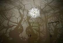Lighting / by Dr Jane