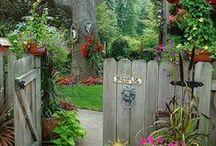 Through the Garden Gate / by Gerry Conboy